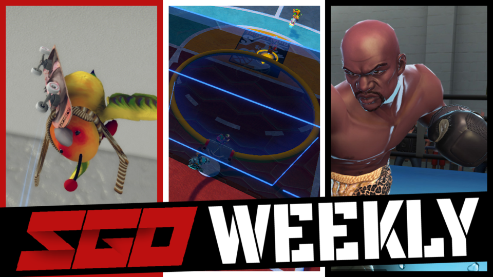 Swing Dunk SkateBIRD SGO Weekly
